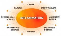 inflammation1